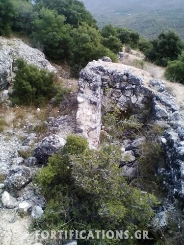 oxiro-faia-petra-1